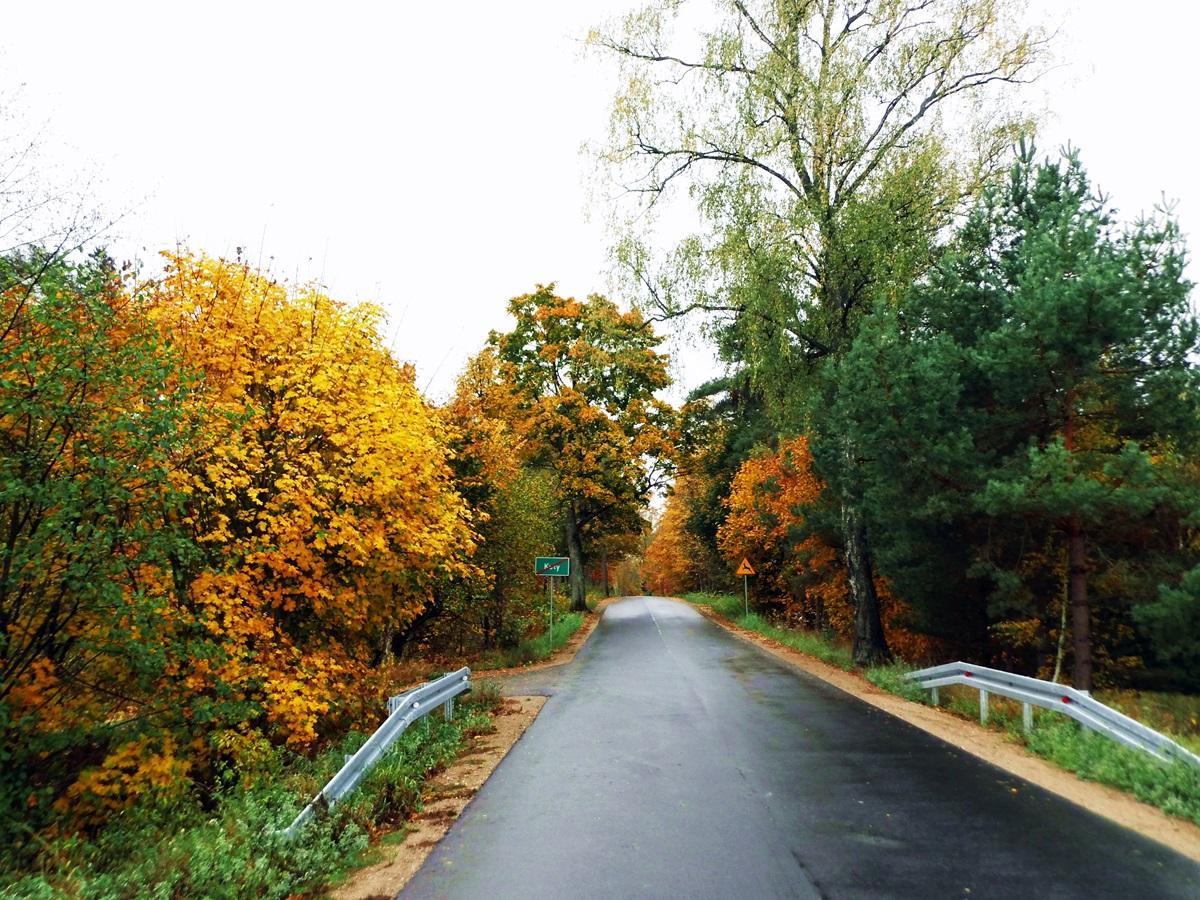 droga, kuty, pozezdrze, jesień