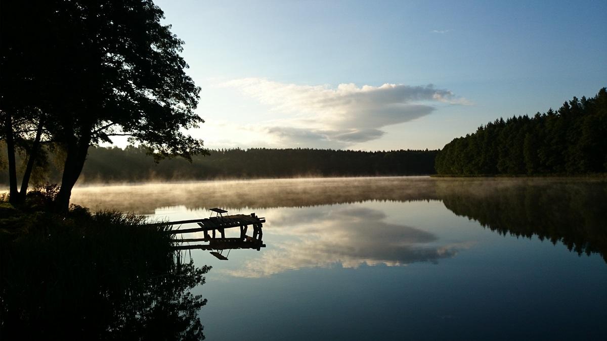 jezioro, czarna_kuta, widok, las, woda, lustro