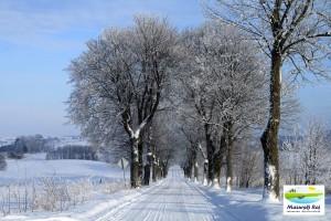 zima, droga, drzewa, śnieg, mazury