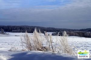 zima, mazury, śnieg, pola, lasy, trawy