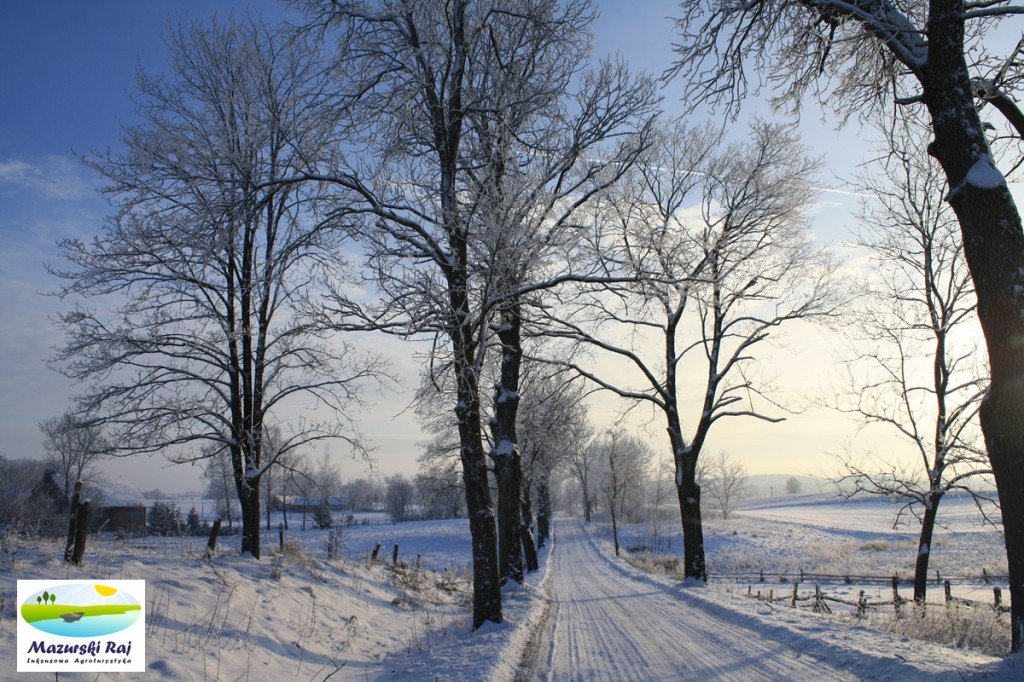 Mazurska droga zimą
