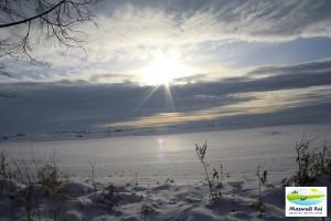 zima, mazury, łąki, trawy, zachód słońca,