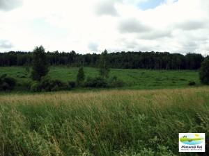 Wschodnia część Kut - tu bierze początek rzeka Bobrówka