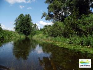 Sapina - między jeziorem Kruklin a jeziorem Patelnia
