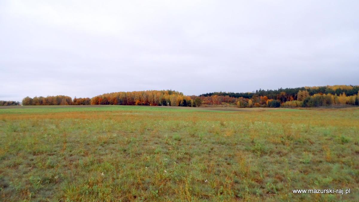 jesień, las, łąki, kuty, przytuły, pozezdrze