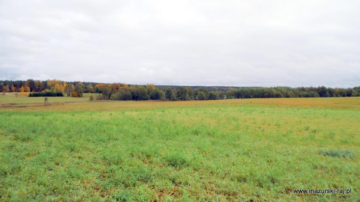 jesień, mazury, łąki, ambonka, kuty, przytuły, pozezdrze