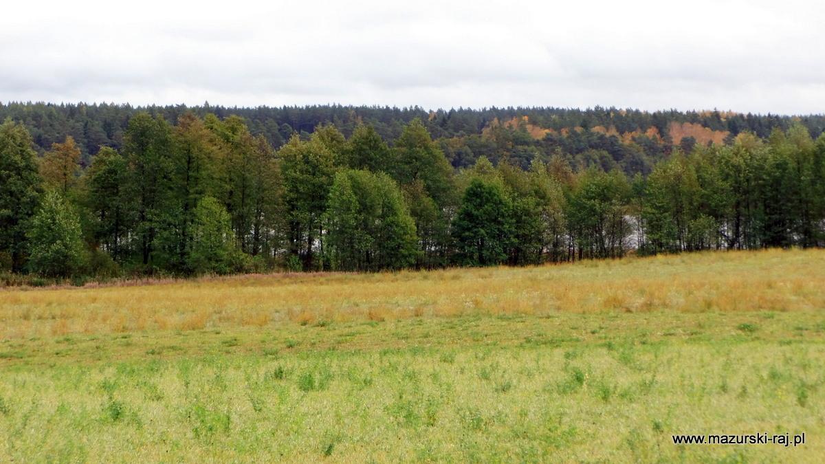 jesien, mazury, kuty, łąki, las, wilkus, jezioro