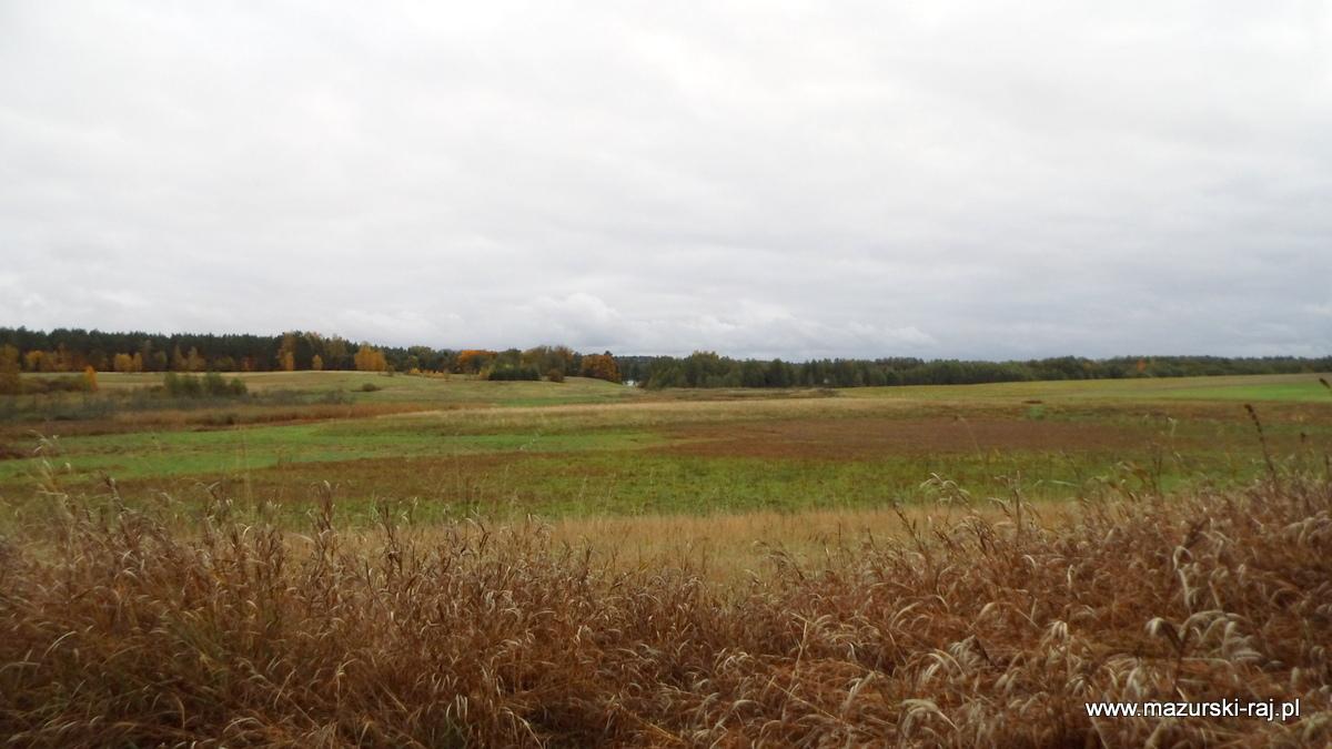 jesień, lasy, mazury, łąki, kuty