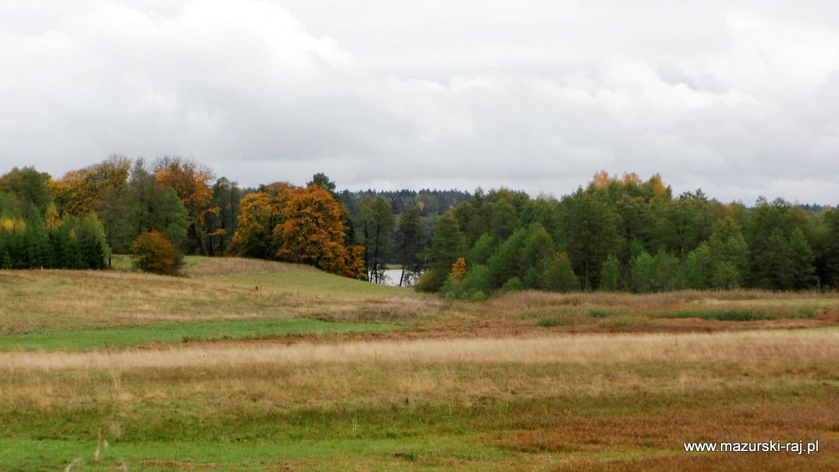 jesień, lasy, mazury, kuty, pozezdrze, jezioro, wilkus