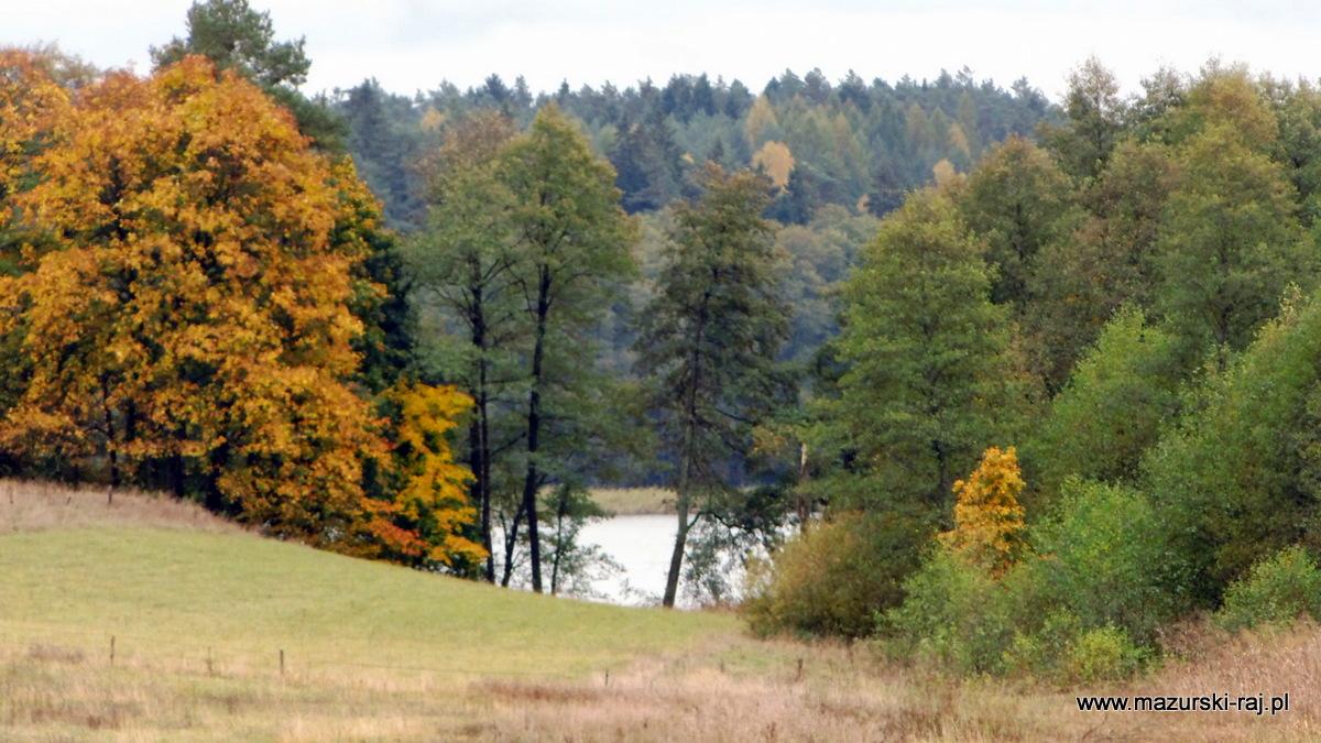 jesień, lasy, mazury, kuty, pozezdrze, wilkus, jezioro