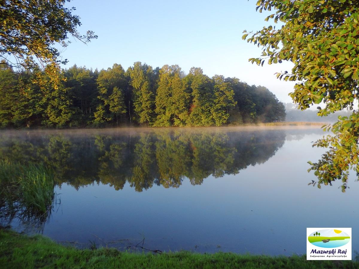 jezioro, czarna_kuta, las, widok
