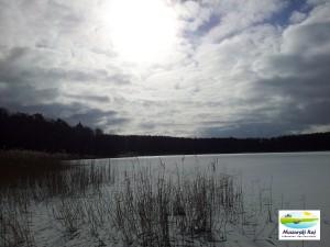 zima, mazury, zamarzniete jezioro, las, ponuro