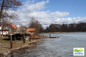 Wiosna 2012 - 25.03.2012 -posesja p. Twarowskich, Kuty 17