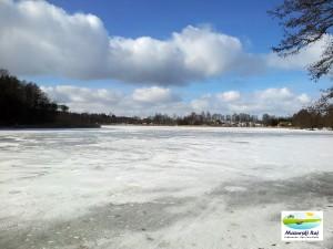 jezioro, czarna kuta, zima, zmarzlina