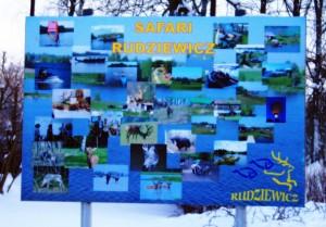 Tablica reklamowa Safari Rudziewicz w Gołdapii
